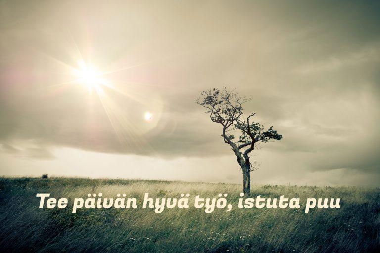 Tee päivän hyvä työ, istuta puu! – Esimerkki natiivimainoksesta